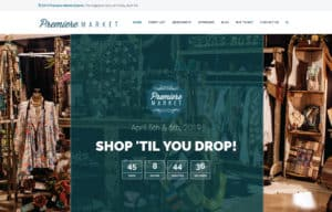 The Vineyard District Website